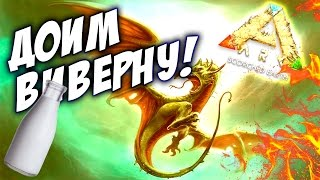 КАК ДОБЫТЬ МОЛОКО ДЛЯ ВИВЕРН? - ARK Scorched Earth